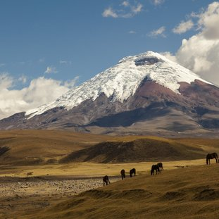 Cotopaxi1Large.jpg