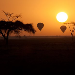 Serengetiluchtbalonvaart.jpg