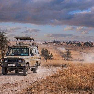 Serengeti-shutterstock_1054716632Large.jpg