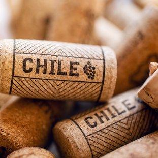 winechile21.jpg