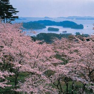 baaivanmatsushima2-enkelkorteversielarge.jpg