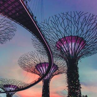 singapore-gardenbythebay-victor-garcia-c53hva-blyq-unsplashlarge.jpg
