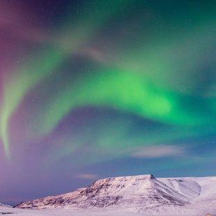 ReykjavikNoorderlicht_winter_IjslandLarge.jpg