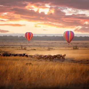 MasaiMara15.jpg